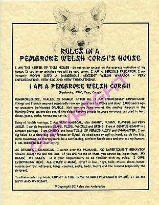 Rules In A Pembroke Welsh Corgi's House