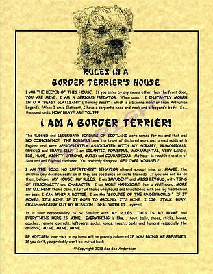 Rules In A Border Terrier's House