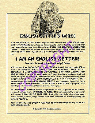 Rules In An English Setter's House