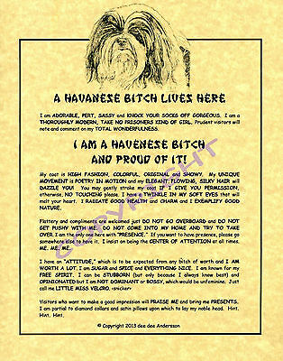 A Havanese Bitch Lives Here
