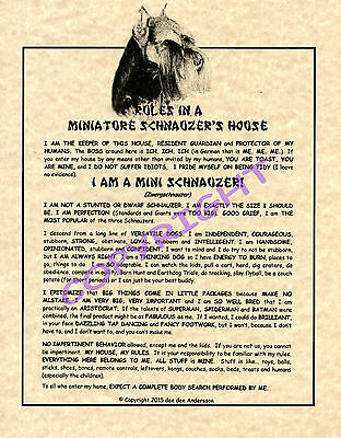 Rules In A Miniature Schnauzer's House