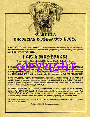 Rules In A Rhodesian Ridgeback's House