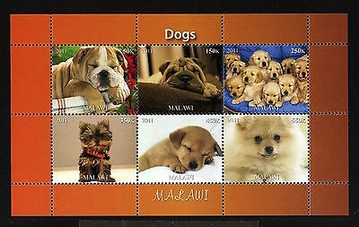 B6-MALAWI-DOGS MNH ** BLOCK.Local private issue.2011.FAUNA-Animals.CHIENS.Perros