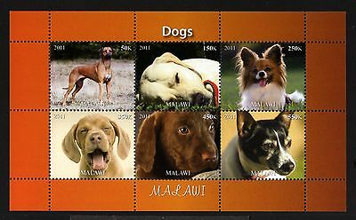 B10-MALAWI-DOGS MNH ** BLOCK.Local private issue.2011.FAUNA-Animal.CHIENS.Perros