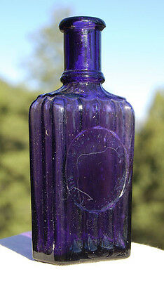 Beautiful DEEP PURPLE antique T NOONAN Co HAIR TONIC bottle NICE design !