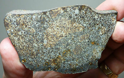 Collection Meteorite Slice Northwest Africa SAHARA 66.85 Grams NWA Unclassified