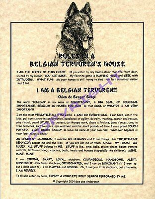 Rules In A Belgian Tervuren's House