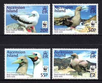 Ascension Island 2016 Red Footed Booby Set 4 MNH