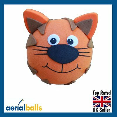 Ginger Tom Cat Car Aerial Ball Anntena Topper