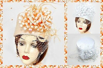 Feather Birdcage Veil Bucket Kentucky Derby Church Dressy Wedding Hat Summer