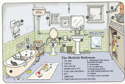 The British Bathroom Scary Spider Broken Toilet Disaster Comic Humour Postcard