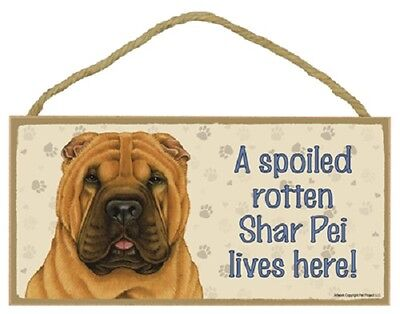 SHAR PEI A Spoiled Rotten DOG PICTURE SIGN wood HANGING PLAQUE Sharpei puppy NEW