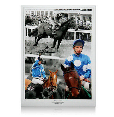 Peter Scudamore hand signed photo montage print Autograph