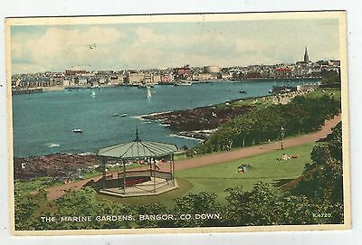 northern ireland postcard ulster irish down bangor