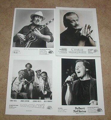Lot Of 4 Blues Artist Promo Photos Aligator Records Blues Musselwhite Buchannon+