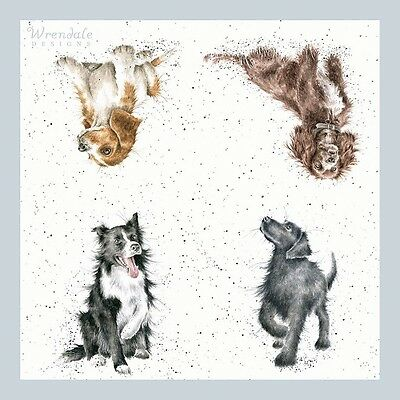 Wrendale Designs Pack Of 20 Walkies Dog Paper Lunch Napkins