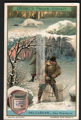 Ermine Hunting Winter Trapping Fur c1907 Trade Card