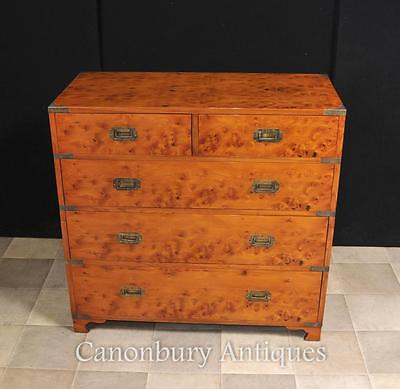 English Campaign Chest Drawers Cabinet Satinwood Colonial Furniture • £1,445.00