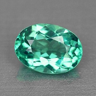0.99 Cts TOP QUALITY RARE NEON GREEN COLOR NATURAL APATITE LOOSE GEMSTONES- VS