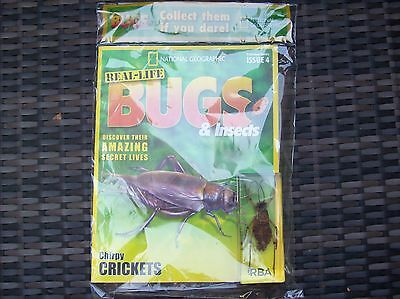 National Geographic Real-life Bugs & Insects magazine Issue 4