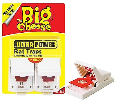 STV The Big Cheese Ultra Power Rat Trap Pack of 2 x 6