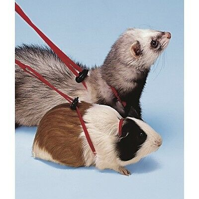 Ferplast Guinea Pig Ferret Harness and Lead Set Red