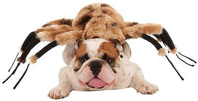 Giant Spider Animal Bug Scary Funny Fancy Dress Up Halloween Pet Dog Cat Costume
