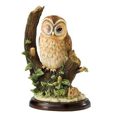 Border Fine Arts Birds of Prey Tawny Owl With Mouse Figurine New Boxed A27053