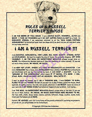 Rules In A Russell Terrier's House