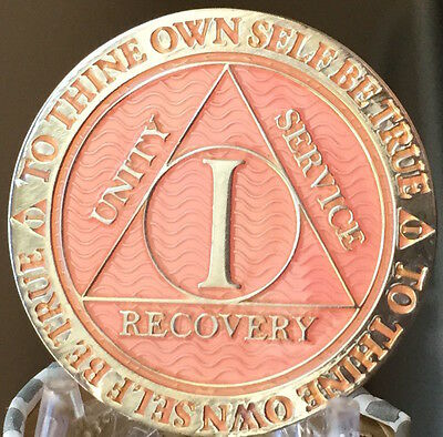 1 Year AA Medallion Pink Silver Plated Alcoholics Anonymous Sobriety Chip Coin