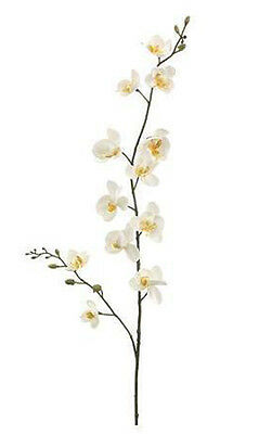Mini Phalaenopsis Orchids ~ Cream / Yellow ~ Silk Wedding Flowers Bouquets
