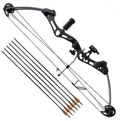 "New Adult Archery Compound Bow 35"" 40-50 lb with Accessories Fiberglass Arrows"