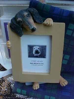 dachshund picture frame #14