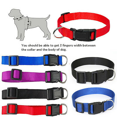 Pet Dog Puppy Cat Nylon Solid Collar Safety Buckle Sizes XS-L Adjustable nice
