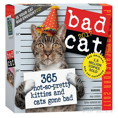 Bad Cat Color Page-A-Day - 2017 Boxed Calendar - 6x6 - Humor Funny Cats Kittens