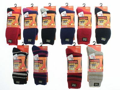 Polar Extreme Insulated Thermal Socks Women's Multi-color Warm Sock Size 9-11