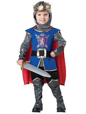Deluxe Knight Child Toddler Costume NEW Medieval Renaissance