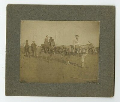 19th Century Vernacular Photography - Mounted Photograph - Horse and Carriage