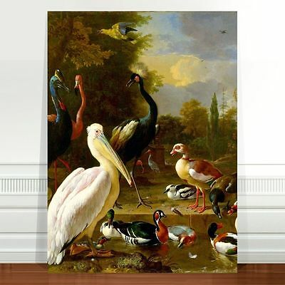Vintage Bird Art Birds of the world~ FINE ART CANVAS PRINT 8x10""