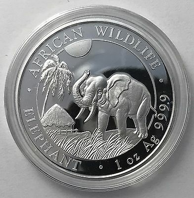 2017 Somalian Elephant 1 oz Troy Ounce .999 Silver Bullion Coin - 1000 Shillings