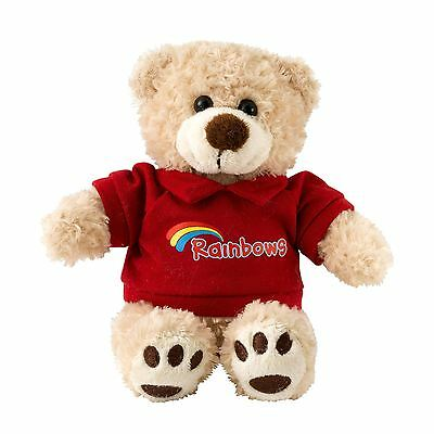 Rainbows Teddy Bear Guides