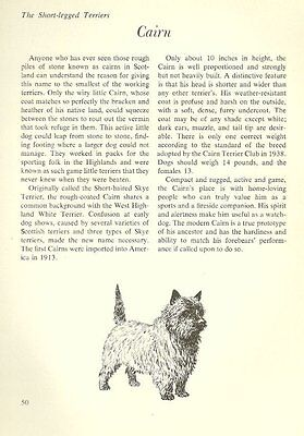 """The Cairn Terrier - Vintage Dog Art Print - Matted """"G"""""""
