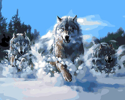 """Wood Framed DIY Paint By Number 16""""*20"""" kit Cool Wolves On Canvas"""