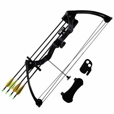 "New Youth Archery Compound Bow 27"" 15-20 lb with Accessories Aluminium Arrows"