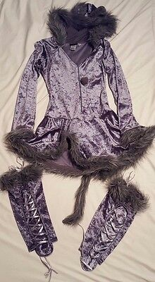 Dreamgirl Adult Women's Gray Sexy Cat Costume With Leggings, Tail, & Ears Size S