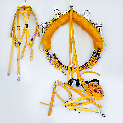 Quick Hitch Mini Trotting Harness - Yellow