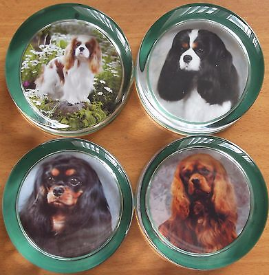 Cavalier King Charles Spaniel paper weight