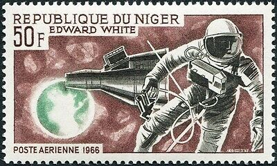 NIGER 1964 50f black, brown and green SG216 mint MNH FG AIRMAIL STAMP!