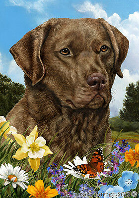 Garden Indoor/Outdoor Summer Flag - Chesapeake Bay Retriever 180701