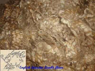 Lamb English Leicester Raw Spinning Fleece Very Lustrous